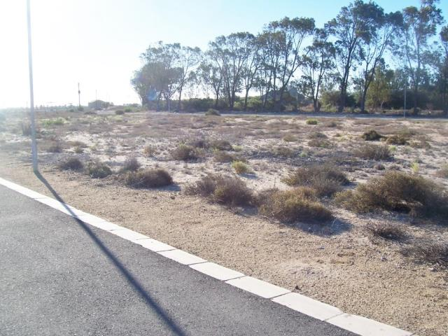 351m² Vacant Land For Sale in Britannia Bay