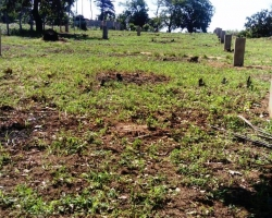 PRIME 1/8 ACRE PLOTS FOR SALE IN VIPINGO RIDGE