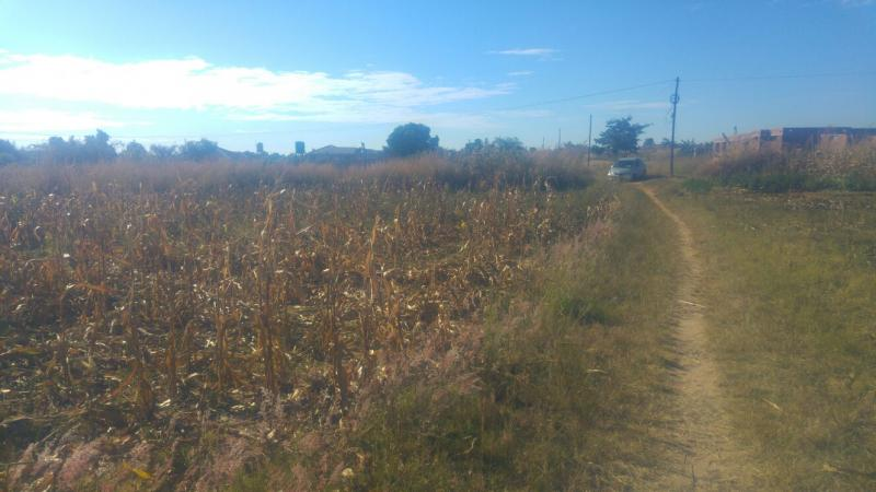 Stands & Residential Land for Sale in Cedar Road, Manresa