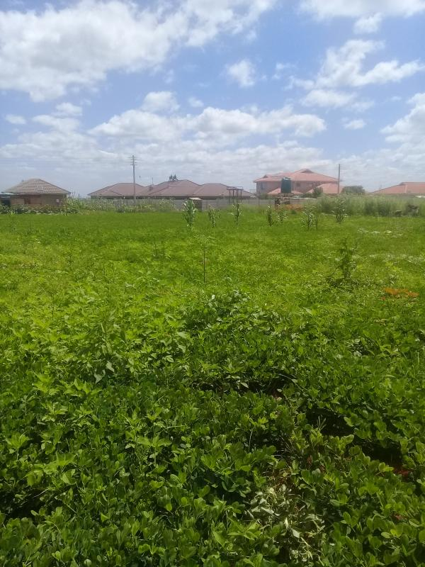 Stands & Residential Land for Sale in Mount Pleasant Heights
