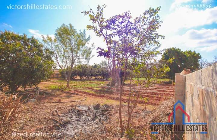 30m by 40m PLOT FOR SALE IN IBEX HILL 4th STREET IN A FENCE